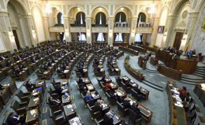 Senatul a respins iniţiativa legislativă privind alegerea primarilor în două tururi