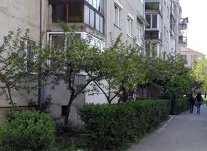 Peste 220 de asociaţii de proprietari din Galaţi au fost notificate să plătească gardul viu primit gratuit de la primărie