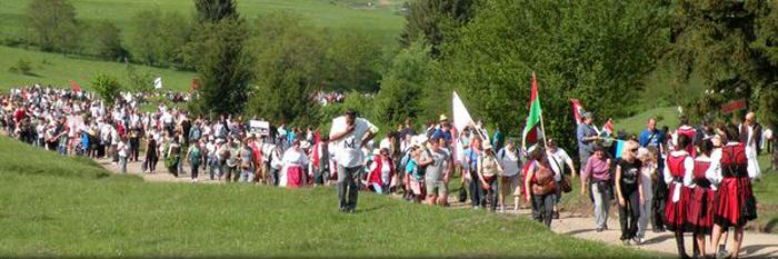 CJ Harghita va susţine construirea unui traseu de pelerinaj pe modelul El Camino, pentru credincioşii care vin la procesiunea de la Şumuleu-Ciuc