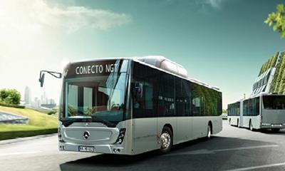Autobuze noi Mercedes, achiziţionate de Primăria Oradea printr-un proiect transfrontalier