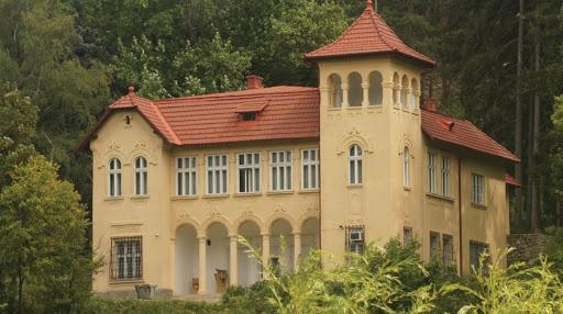 Castelul din Ciucea al lui Octavian Goga, câştigat de CJ Cluj în instanţă