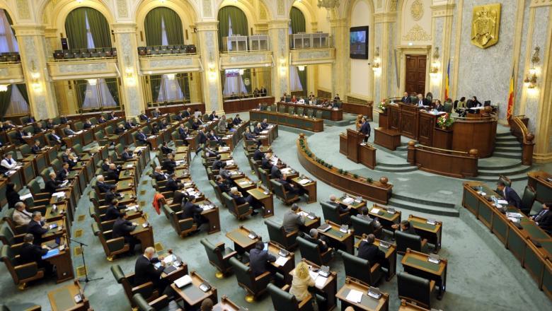 "Senatul a adoptat OUG 95/2021 privind Programul ""Anghel Saligny"""