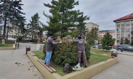 Primăria Municipiului Moinești a demarat campania curățeniei de primăvară