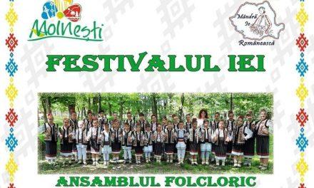 Primăria Municipiului Moinești organizează Festivalul Iei