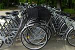 Proiectul privind acordarea unui voucher de 500 de lei la cumpărarea unei biciclete va fi dezbătut în CGMB